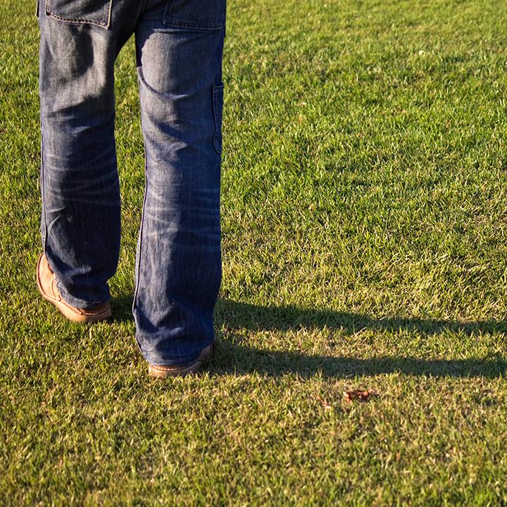 隣の芝生が青く見えるだけ?